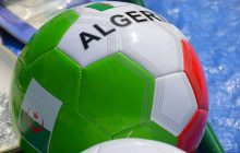 Fennecs d'Algérie